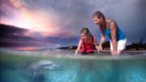 2 Day Tangalooma Resort and Dolphin Feeding Tour, Brisbane