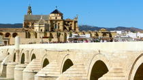 4-Day Spain Tour: Cordoba, Seville and Granada from Madrid, Madrid