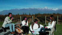 5-Day Private Tour of Mendoza, Mendoza, Multi-day Tours