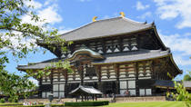 2-Day Kyoto and Nara Rail Tour by Bullet Train from Tokyo, Tokyo, Half-day Tours