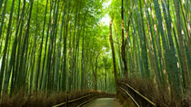 Arashiyama and Sagano Morning Walking Tour, Kyoto, null