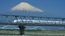 Kyoto and Nara 2-Day or 3-Day Rail Tour by Bullet Train from Tokyo, Tokyo, Day Trips