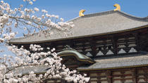 Kyoto and Nara Day Tour Including Golden Pavilion and Todai-ji Temple from Osaka, Osaka