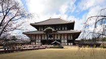 Kyoto and Nara Day Trip from Kyoto including Nijo Castle, Kyoto, Bus & Minivan Tours