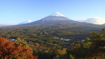 Mt Fuji and Aokigahara Forest Day Trip from Tokyo, Tokyo, Multi-day Rail Tours
