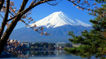 Mt Fuji Day Trip including Lake Ashi Sightseeing Cruise from Tokyo, Tokyo, Multi-day Rail Tours