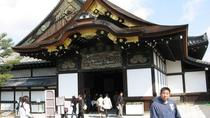 Nara Afternoon Tour of Todaiji Temple, Deer Park and Kasuga Shrine from Kyoto, Kyoto, Half-day Tours