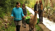 8-Night Tour to Cusco from Lima by Air: Peru Andean Living and Culture, Lima, Multi-day Tours
