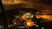 Krakow Super Saver: Wieliczka Salt Mine Half-Day Trip plus Private Krakow Tour by Electric Car, ...