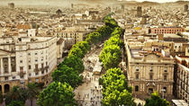 Private Tour: Barcelona Half-Day Sightseeing Tour, Barcelona, Night Tours