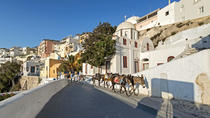 Santorini Private Tailor Made Experience with Food and Wine Tasting, Santorini, Private Sightseeing ...