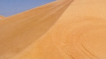 4x4 Abu Dhabi Desert Safar with Camel Ride, Dinner and Belly Dancing Performance, Abu Dhabi, 4WD, ...