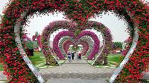 Dubai Fairyland Sights: Miracle Gardens, The Butterfly Garden and Global Village , Dubai, ...
