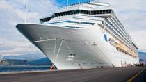 Dubai Private Transfer: Cruise Port to Dubai Hotel, Dubai