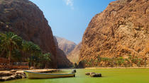 Private 4x4 Safari of Wadi Shab - The Coastal Caravan, Muscat, Dolphin & Whale Watching