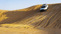 Private Tour: 4x4 Taste of Arabian Desert Day Trip from Dubai, Dubai, 4WD, ATV & Off-Road Tours