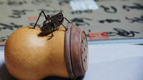 3-Hour Hutong Walking Tour And Cricket Fighting Culture Learning Experience, Beijing, Custom...