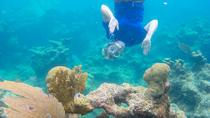 US Virgin Islands Eco Tour Snorkel Adventure, St Thomas, Scuba & Snorkelling