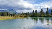 Guided Adventure Hiking in the Kenai National Wildlife Refuge, Anchorage, Hiking & Camping