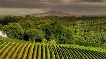 Half-Day Stellenbosch Winelands Tour from Cape Town, Cape Town, Wine Tasting & Winery Tours