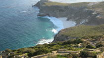 Peninsula Tour - Half day from Cape Town, Cape Town, Half-day Tours