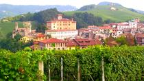 Full-Day Langhe Wine Tour, Langhe-Roero and Monferrato