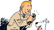 Tintin Comics Tour to Hergé Museum from Brussels, Brussels