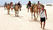 Eco Buggy and Dunas Camel Tour, Fuerteventura, Eco Tours