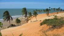 Lagoinha Beach from Fortaleza, Fortaleza, Half-day Tours