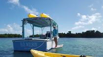 Key West Kayak and Snorkel Eco Tour, Key West, Kayaking & Canoeing