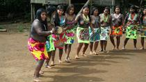 Private Embera Village Day Tour, Panama City, Private Sightseeing Tours