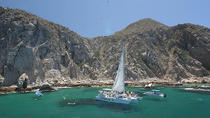 Los Cabos Sailing and Snorkel Cruise, Los Cabos, Dolphin & Whale Watching