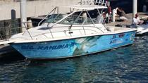 Private 5-Hour Deep Sea Fishing for 4 People, Los Cabos, Other Water Sports