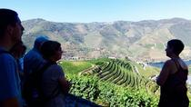Small Group Douro Wine Valley Tour with Lunch and Wine Tasting, Northern Portugal, Wine Tasting & ...