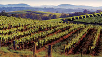 2-Day Hunter Valley Wine Tasting Tour with Overnight at Hunters Resort, Sydney, Wine Tasting & ...