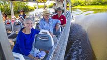 2-Day Kakadu National Park, Yellow Waters Cruise, Aboriginal Art Sites and East Alligator River ...