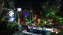 Hunter Valley Gardens Christmas Lights Spectacular from Sydney, Sydney, Christmas