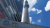 Full Day Asakusa Tour with Ninja Experience and Tokyo Skytree, Tokyo, Full-day Tours