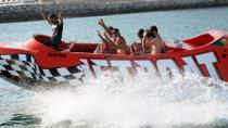 Algarve Jet Boat Tour from Albufeira, The Algarve, Dolphin & Whale Watching