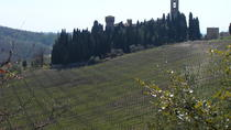 Florence Day Trip to Chianti and San Gimignano, Florence, Private Sightseeing Tours