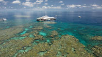 Great Barrier Reef Day Cruise from Cairns Including Snorkeling and Marine Biologist Presentation,...