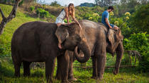 Mahout for a Day Experience at Bali Zoo Including Lunch and Balinese Massage, Bali, Nature &...
