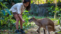Zookeeper for a Day at the Bali Zoo, Bali, Nature & Wildlife