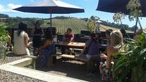Half-Day Waiheke Wine Tour, Auckland, Wine Tasting & Winery Tours