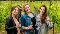 Waiheke Wine and Food Tour Including Lunch, Auckland, Wine Tasting & Winery Tours