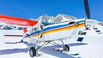 35-Minute Valley and Glacier Ski Plane Tour from Mount Cook, Mount Cook, Air Tours