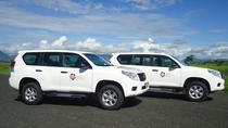 Private Arrival Transfer: Nadi Airport to Hotel, Fiji