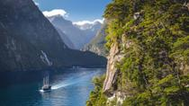 Doubtful Sound Wilderness Cruise from Te Anau, Fiordland & Milford Sound