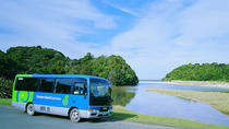 Stewart Island: Village and Bays Tour, South Island, Half-day Tours