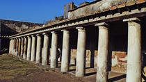 Pompeii and Mt Vesuvius Day Tour with Lunch at a Wine Farm, Naples, Day Trips